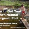 Natural Organic Pool