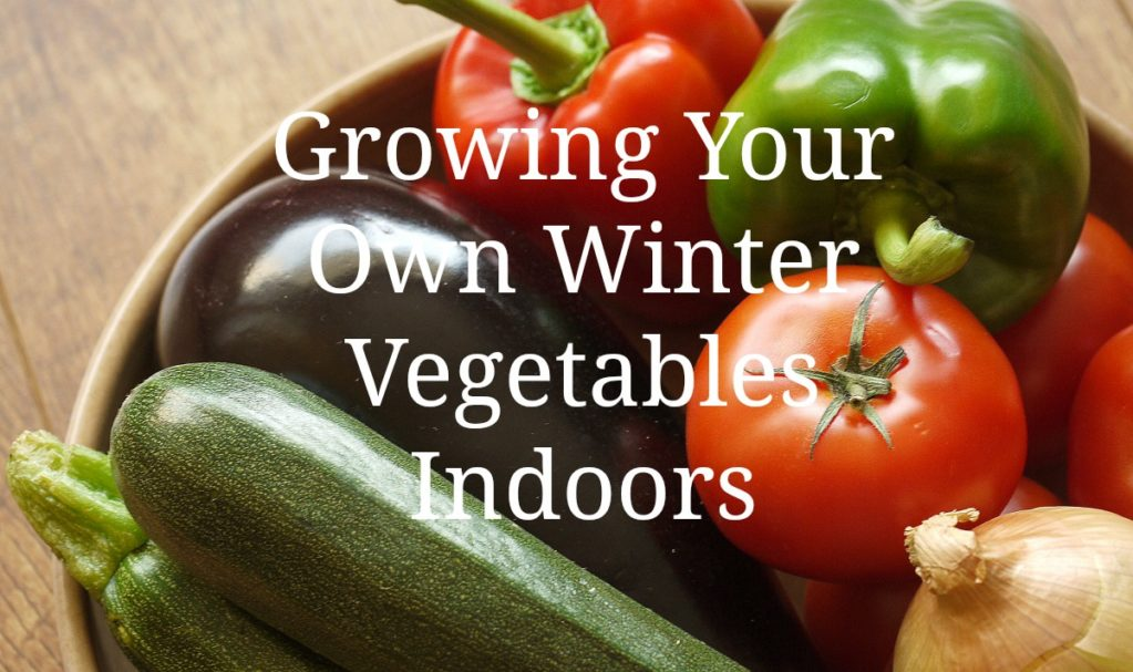 Growing Your Own Winter Vegetables Indoors