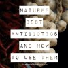Natures Best Antibiotics and How to Use Them