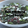 Kale and Berry Salad Recipe photo by Clara Persis