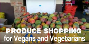 Expat produce shopping for vegans and vegetarians in Cabo
