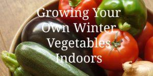Growing Your Own Winter Vegetables Indoors