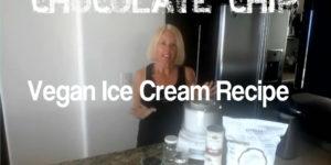 Coconut Crunch Chocolate Chip Vegan Ice Cream Recipe